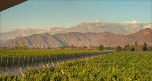 Kaiken Winery, Mendoza, Argentina