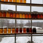The Sweet Smell of Success - Our Maple Syrup Weekend